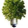 Consejos para reducir nuestra huella ecológica