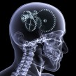¿Por qué la hipnosis para dejar de fumar es más eficaz que otros métodos?