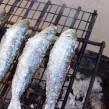 Producción de peces por acuicultura en Argentina