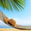 ¿Qué factor de protección solar es más adecuado para mi piel?