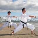 Acciones prohibidas en Judo