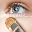 ¿Cómo aplicar correctamente la sombra de ojos?