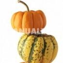 Dulce de Halloween: pastel de calabaza