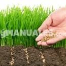 Invernaderos ecológicos: Comer sano fuera de temporada