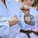 ¿Qué es un Yuko en Judo?